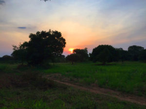 Sunset in the village